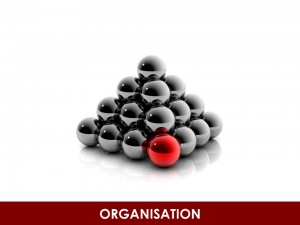 GB_S_Organisation